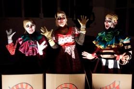 pandora puppets and pop up book 060